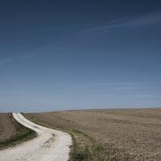 crop nutrition drought Saskatchewan